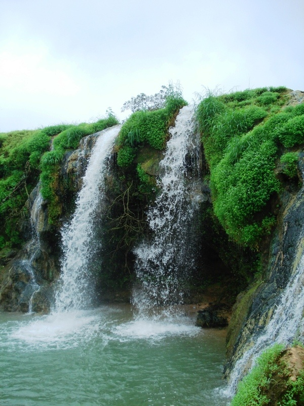 Wadi Darbat, Salalah | Memories of places I'm dying to go ...