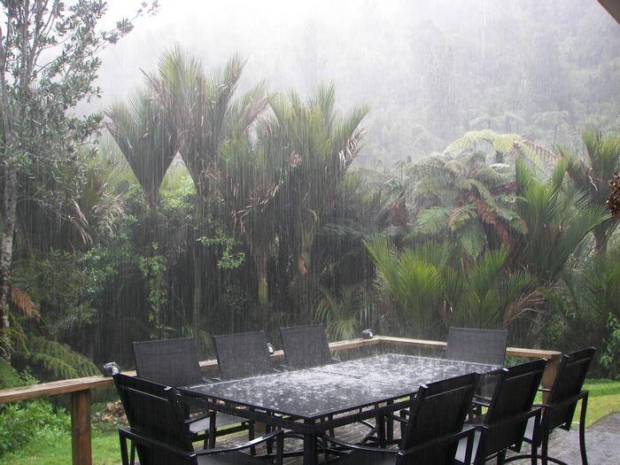 winter rain in our backyard