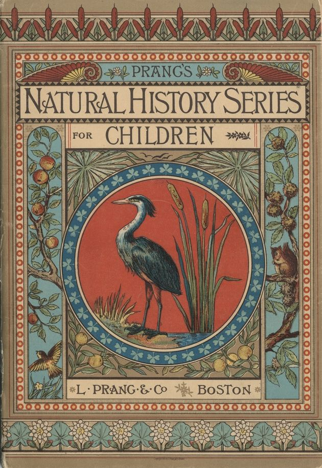 Prang's Natural History Series for Children -Wading birds (1878)