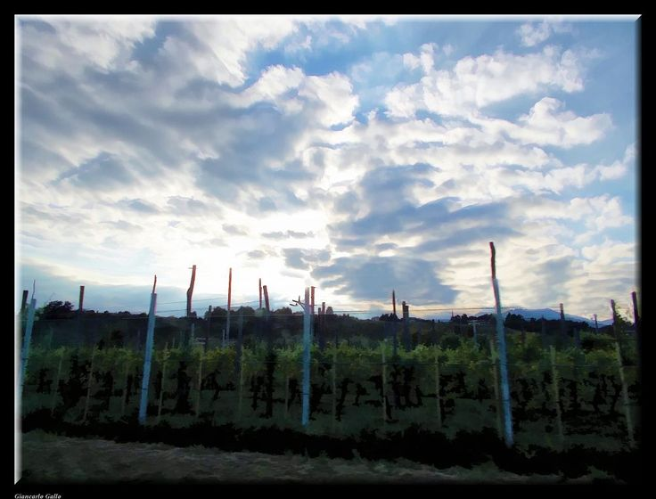 Vineyards and clouds by Giancarlo Gallo