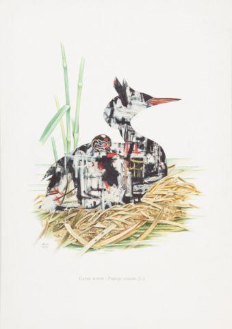 Kolář Jiří (1914–2002) | Potápka roháč, Z cyklu Ornitologie moderního umění | Aukce obrazů, starožitností | Aukční dům Sýpka