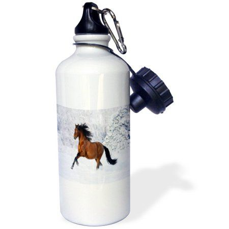 3dRose image of Andalusia horse galloping in snow, Sports Water Bottle, 21oz, White