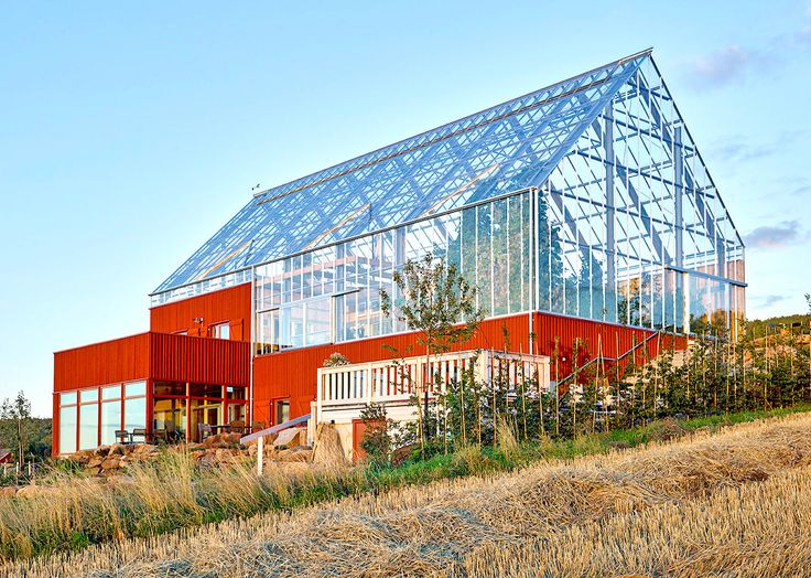 Sweden's house-in-a-greenhouse grows food sustainably with recycled wastewater