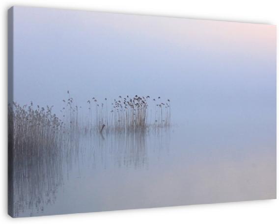 Deze foto is te koop in mijn webshop: http://renevos.werkaandemuur.nl