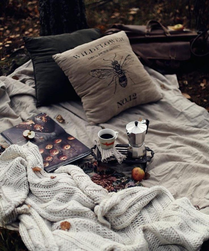 относится группе картинки осенний день одеяло кофе все ученые
