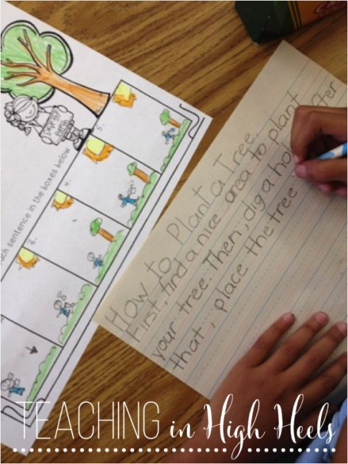 write an expository essay on how to plant a tree