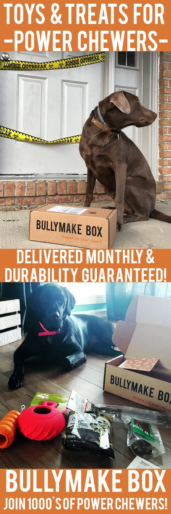 Is your dog a POWER CHEWER? Get DURABLE toys and DELICIOUS treats delivered monthly! All toys guaranteed 14 days or we replace them for free. See here: https://bullymake.com/?utm_source=pinterest&utm_medium=pinterest-ads&utm_term=lab-jan10&utm_content=lab-jan10