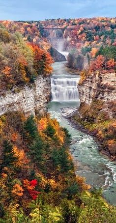 Letchworth State Park. Just a stone's throw away from where I live. It is breathtaking in the Fall!!