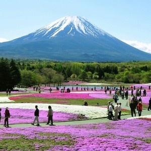 O Fuji-Hakone-Izu National Park é um parque nacional no Japão. Famoso por suas cores exuberantes, o parque se espalha por diversos locais turísticos dispersos. O ponto mais distante, a ilha de Hachijō-jima, está há centenas de quilômetros de Monte Fuji. O parque inclui uma variedade de características geográficas, incluindo fontes termais naturais, linhas costeiras, áreas montanhosas, lagos e mais de mil ilhas vulcânicas.