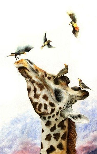 86 best Giraffes are funny too images on Pinterest Giraffes - griffe für küche