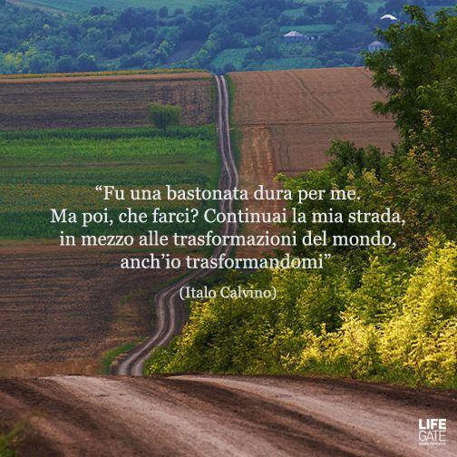 """""""Fu una bastonata dura per me. Ma poi, che farci? Continuai la mia strada, in mezzo alle trasformazioni del mondo, anch'io trasformandomi"""" Italo #Calvino"""