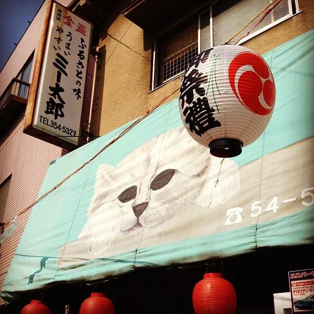 Nekozane, Urayasu, Chiba, June 8th 2012 by Grant McGaheran