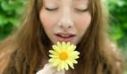 The Smell is Right – Using Scents to Enhance Life | Psychology Today