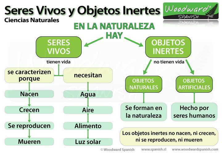 Seres Vivos y Objetos Inertes - Ciencias Naturales