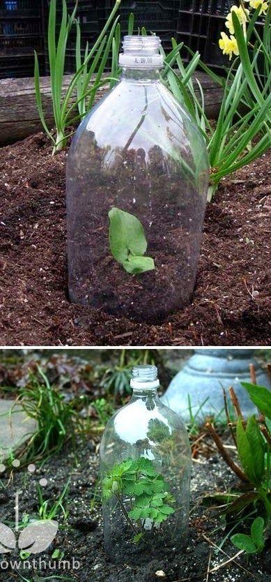 101 Gardening: Greenhouse made of plastic bottles