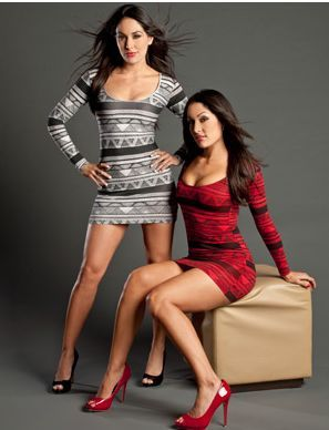 The Bella twins Brie and Nikki - Google Search