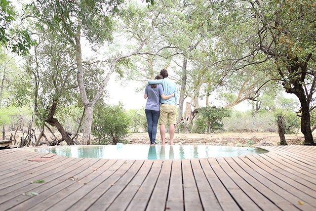 Scroll through this Kruger safari travel guide for information on how to get around, where to stay, and what to expect on safari in South Africa!