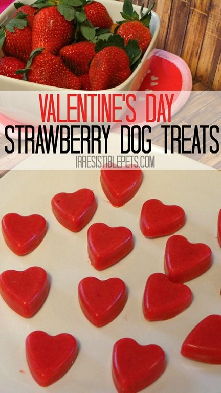 Valentine's Day Frozen Strawberry Dog Treats by IrresistiblePets.com