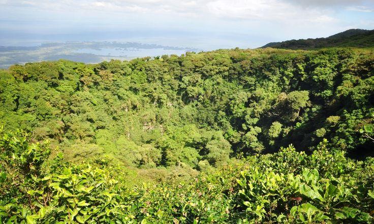 Visite et photo du volcan Mombacho à coté de Granada. Randonnée au sein de la Cloud Forest, des espèces endémiques et du lac Nicaragua.