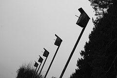 Nest Boxes (Knirsch Knarz (Flo))