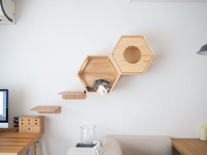 Myzooの六角ハウスとステップをマンションの壁に取り付けました 付属品がコンクリート用で使えないので石膏ボード用アンカーやビスを別途購入する必要がありました 工務店さんに取付け てもらった様子を綴ります ハウス 猫 インテリア 六角