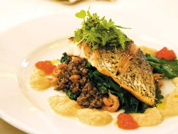 Wild Bass, Brown Shrimp and Lentils with White Onion Cream