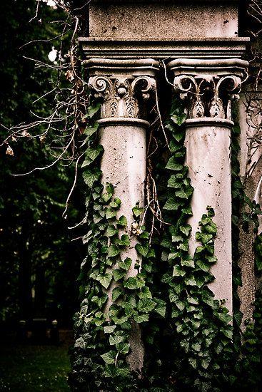 My sacred garden I. by Csaba Jekkel