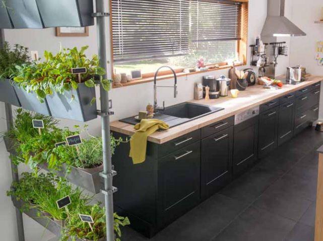 Etageres plantes vertes