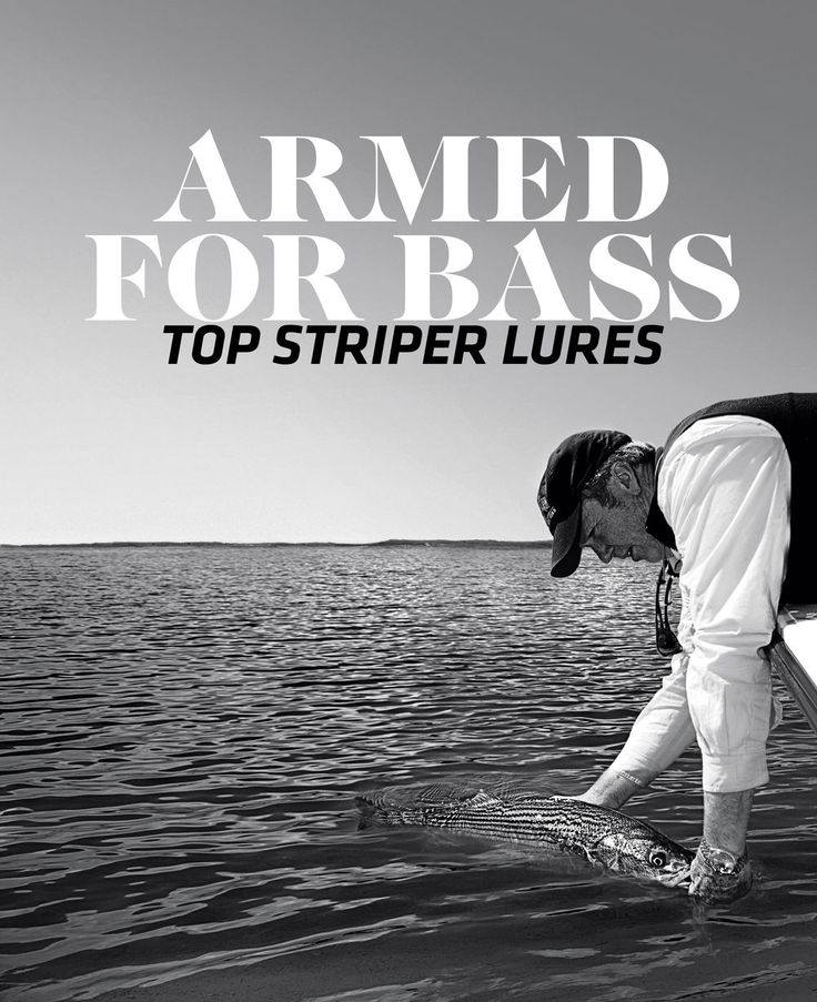 Among the multitude of cool fishing options, casting artificial lures to striped bass in the Northeast ranks up at the top of the list. Perhaps the best thing about chucking hardware at bass stems from the fact that you can target them in many different habitats and water depths, which all require different tactics and tackle.