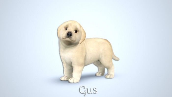 Gus Golden Retriever puppies by MorganaBanana - Free Sims 3 Pets Downloads Morgana Banana Custom Content Caboodle - Best Sims3 Updates and Finds