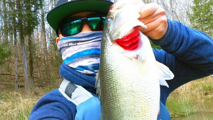 25 gorgeous kayak bass fishing ideas on pinterest bass for Kayak bass fishing tournaments