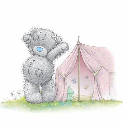 Серый мишка Тедди (Тетти) и лето