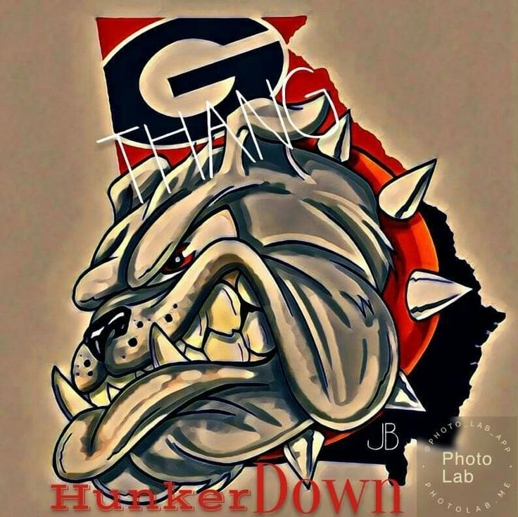 Pin by Steve Jones on Dawg Nation Bulldog wallpaper