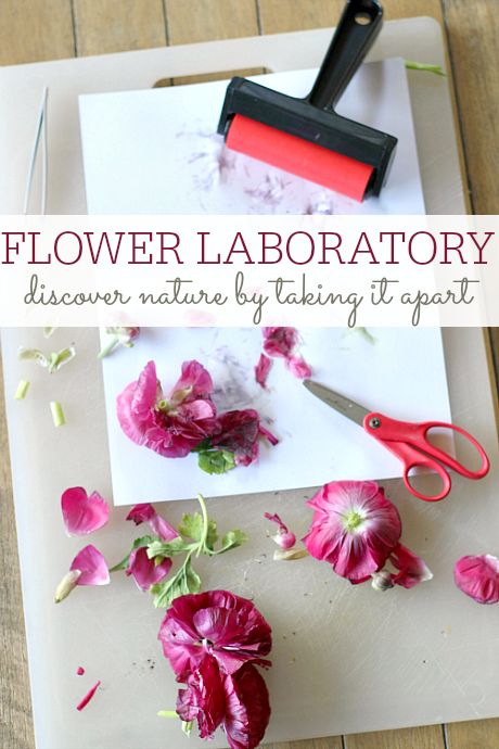 This is a great nature activity for a rainy summer day when you still want to explore but can't do it outside. Gather your materials. You will need some flowers with leaves and stems, a cutting board, plain white paper, a rolling pin or brayer roller, tweezers, and scissors.