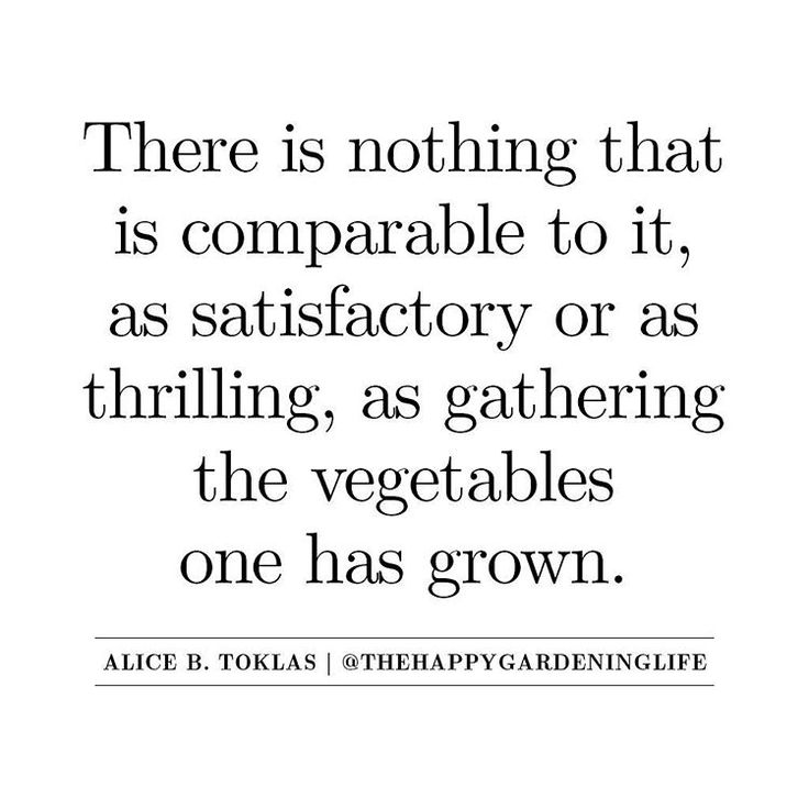 More gardening quotes and tips available at http://www.instagram.com/thehappygardeninglife :)