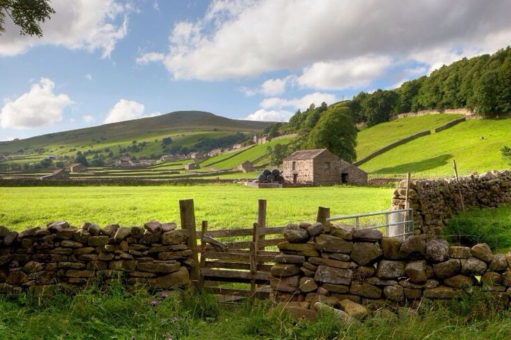 Drystone wall and barn in the Dales