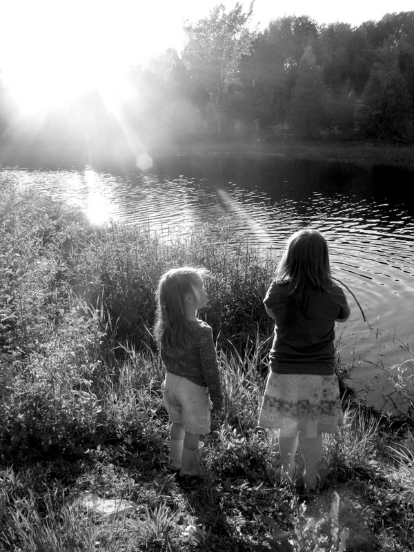 More Camden Pond Moments . . .