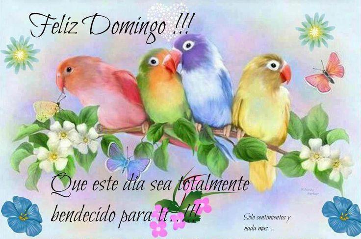 Feliz Domingo!!! Que este día sea totalmente bendecido para ti...!!!