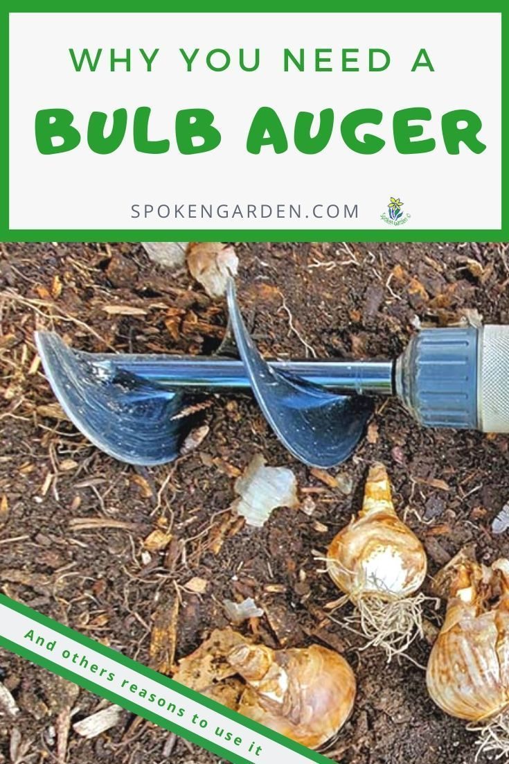 Stop Hand Digging In Your Garden And Use This Bulb Auger Instead