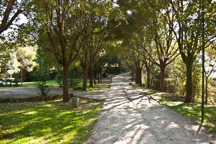 I giardini di Bomarzo