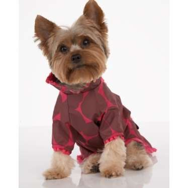 Juicy Couture Dog Rain CoatPampered Pooch, Rain Coats He, Juicy Couture, Coats He Stylin, Yorkie Lovers 2, Dogs Rain, Pampered Pets, Couture Dogs, Animal