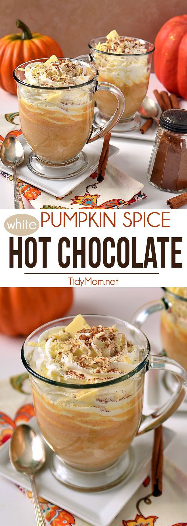 Pumpkin Spice White Hot Chocolate - a deliciously thick and decadent fall drink that does not include coffee - keep it on warm in a slow cooker for a party! Just like pumpkin pie in a mug! Perfect for a chilly fall evening! Pumpkin Spice White Hot Chocolate recipe at TidyMom.net