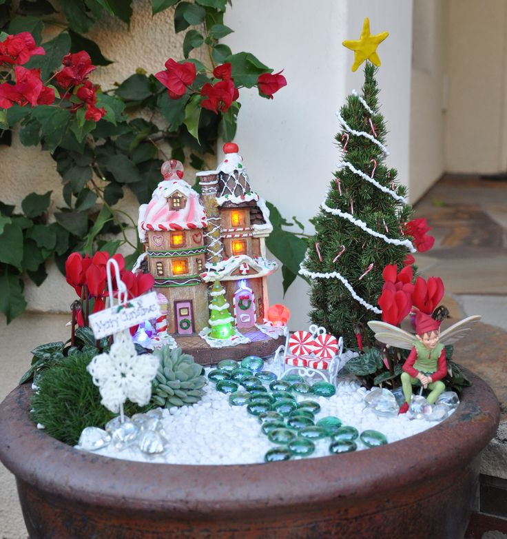 Natalie's Christmas fairy garden.  I am so proud of my niece and her daughter...!