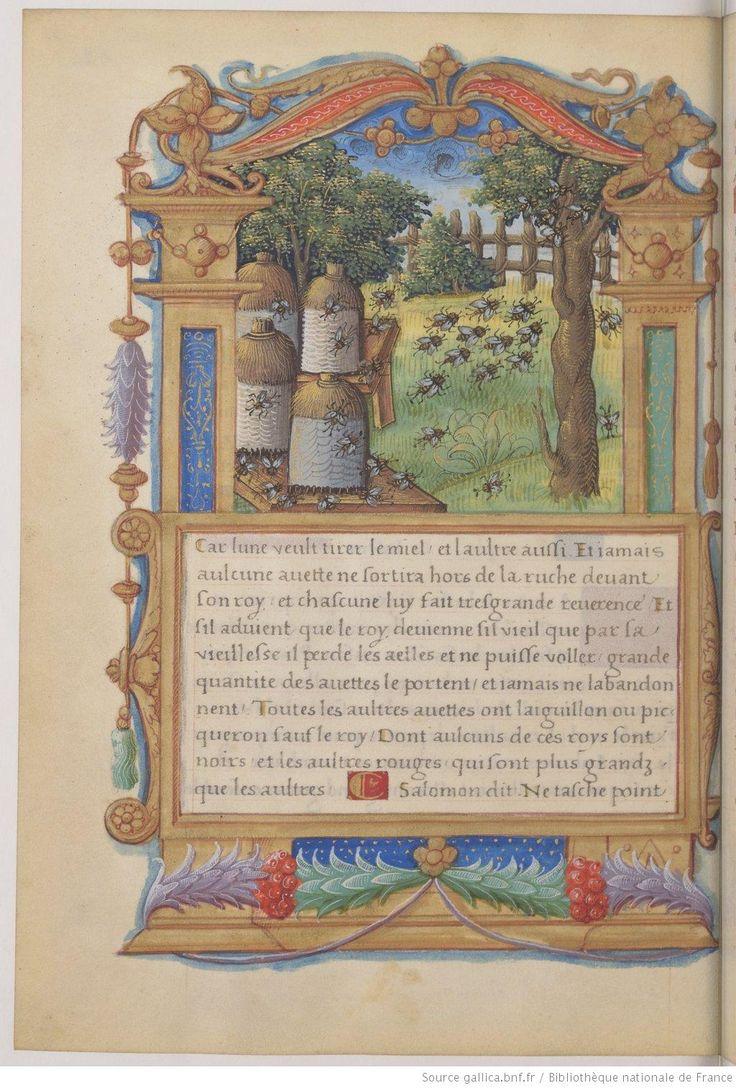 Le Livre nommé Fleur de vertu