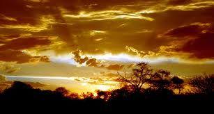 Kalahari Sunset - Google Search