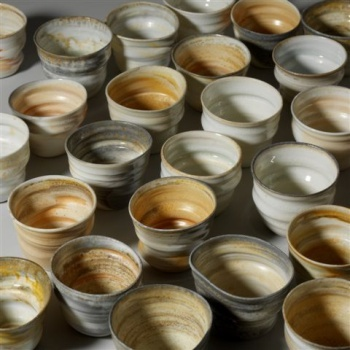 Karin Michelsen, Salzglasiertes Steionzeug und Salzglasiertes Porzellan, Belobigung