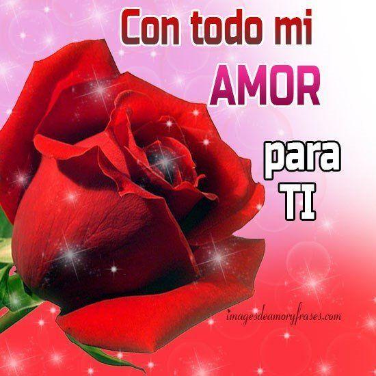 Bellas Rosas Rojas Con Mensajes De Amor | Imagenes De Amor y Frases