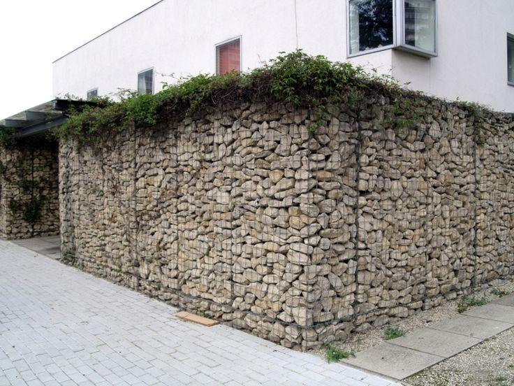 Gabionenwand Gabionenzaun Moderne Gartengestaltung Begruenung Kletterpflanzen Efeu Haus