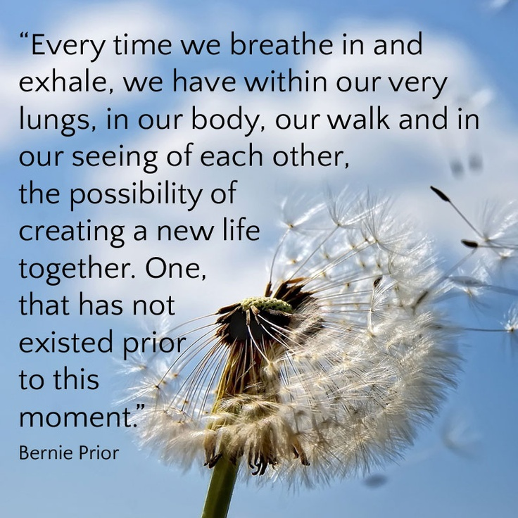 """Every time we breathe in and exhale, we have within our very lungs, in our body, our walk and in our seeing of each other, the possibility of creating a new life together. One, that has not existed prior to this moment."" Bernie Prior"