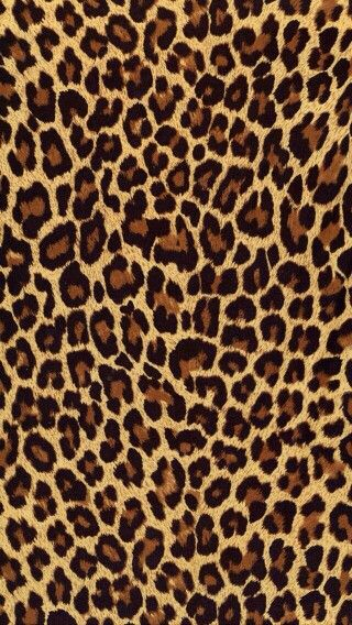 Cute animal print patterns - photo#3